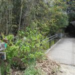 細野キャンプ場のトイレ横に設置されている道樹山の登山コースを示す道標