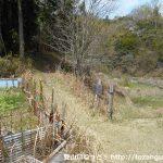 黍生の足助追分側の登山口から黍生の登山道を見る