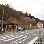 大平井公園前バス停(設楽町町営バス)