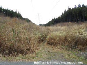 岩岳の登山口となる送電線巡視路の入口から見る登山道