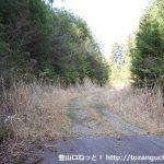 笹頭山の登山口へ向かう林道の終点手前の舗装が途切れるところ