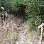 笹頭山の登山道入口から見る登山道
