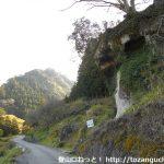 棚山林道の猿ヶ岩前