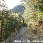 棚山林道の未舗装のダートロード
