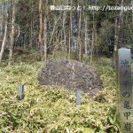 池ノ平の亀甲岩