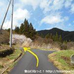 子檀嶺岳の当郷管社コースの登山口手前の石仏のある三叉路