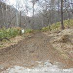 鹿沢温泉の湯ノ丸山登山口から見る角間峠への登山道