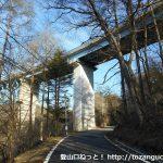 初谷バス停前の車道を東に進み国道254号線の高架橋下をくぐる