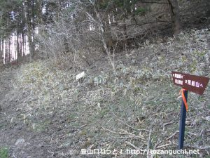 内山峠の熊倉峰への登山道入口