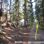 鍬柄嶽登山口前の林道を直進