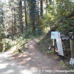 妙義神社の本殿左側にある妙義山への登山道の入口