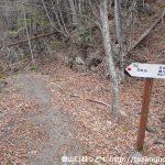 天丸橋の大山への登山道の入口