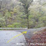 大ナゲシの赤岩橋登山口前の林道