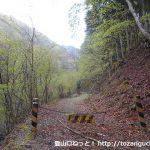 大ナゲシの赤岩橋登山口の林道ゲート