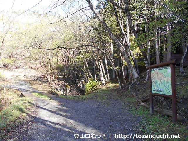 栗木平の赤久縄山登山口
