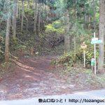 林道沢口線の入口から見る父不見山へ林道
