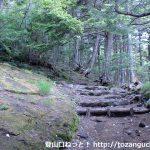 富士下山コース「スバルライン五合目~馬返し」のご紹介