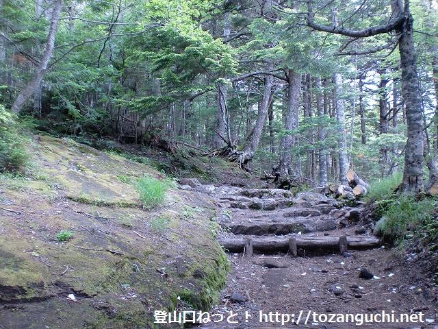富士山の吉田口登山道