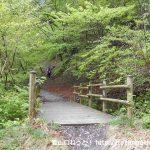 林道橋立線終点にある武甲山登山口