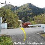 武州中川駅から若御子神社に行く途中で横切る車道を超えるところ