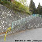 強石の秩父御岳山登山口に向かう途中の車道をショートカットするところ2