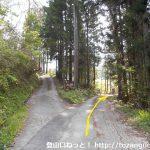 蛇紋岩採掘場に行く途中の林道分岐