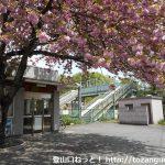 竹沢駅(JR八高線)