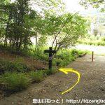 弓立山・男鹿岩の登山道入口前