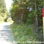 武蔵横手駅前の国道299号線から五常ノ滝に向かう林道に入ったところ