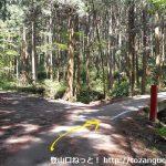 物見山の登山口に行く途中の林道の分岐