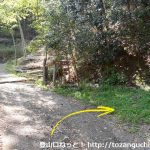 小沢峠の棒ノ折山登山口(上成木側)から登山道に入るところ