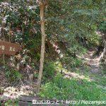 棒ノ折山の登山口 小沢峠と上成木にバスでアクセスする方法