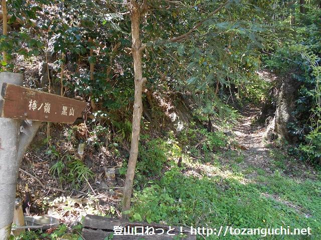 小沢峠の上成木側にある棒ノ折山登山口から見る登山道