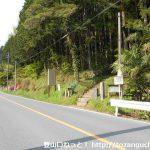 県道53号線の小殿にある竹寺の登山口