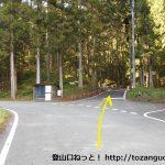 栗生神社に行く途中の林道の十字路