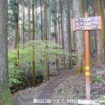 栗生神社の本殿左奥にある栗生山の登山道入口