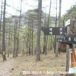 オンマ谷に設置してある登山道の道標