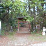 戸神山南山麓の虚空蔵尊の参道の石段