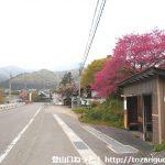 迦葉山バス停(関越交通)