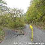 秋小屋沢橋に向かう途中の林道の最初の分岐