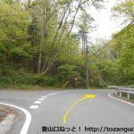 岩櫃城跡の平沢登山口に行く途中の林道