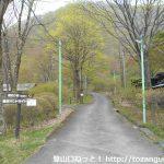 わらび平森林公園キャンプ場のテントサイトに向かう小路