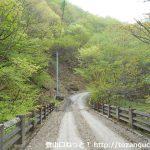 川浦林道の広鈴橋を渡る
