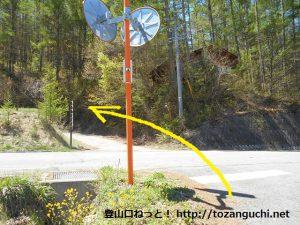 白岩バス停横の橋を渡って県道に出たらそのまま県道を横切って農道に入る