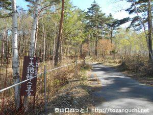 大弛峠の登り口(峰越林道の入口)
