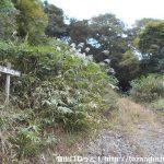 多飯が辻山の登山口にJR内名駅から歩いてアクセスする方法