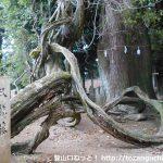 矢筈城跡(矢筈山)の登山口 千磐神社と若宮神社へのアクセス