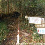 東郷山の登山口に設置されている道標
