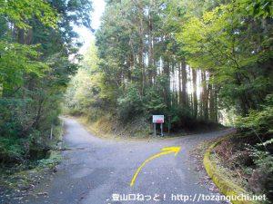 玖波分れバス停から下川上に向かう途中の峠の林道分岐を右へ