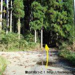 潮原温泉から吉和冠山の登山口に向かう途中のタイヤ工場の先の林道分岐を直進